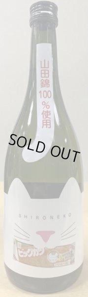 画像1: 「2020年発送になります」近江ねこ正宗 × すぐるビッグカツ 純米酒 SHIRONEKO 720ml (1)