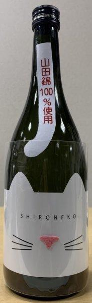 画像1: 近江ねこ正宗 純米吟醸酒 SHIRONEKO 720ml 白猫 (1)