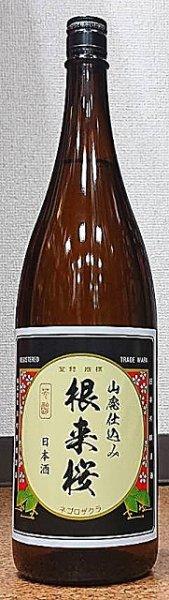 画像1: 根来桜 山廃本醸造 1800ml (1)